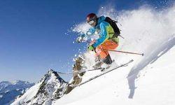 Behandling af Skiskader